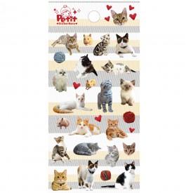 da5269 miaow Cat